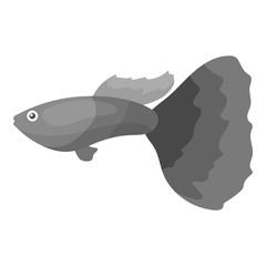 Guppy fish icon monochrome. Singe aquarium fish icon from the sea,ocean life monochrome.