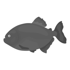 Piranha fish icon monochrome. Singe aquarium fish icon from the sea,ocean life monochrome.