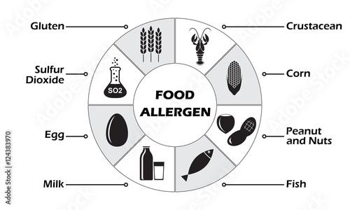 Food allergen icons set isolated on white background infographics food allergen icons set isolated on white background infographics template vector illustration maxwellsz