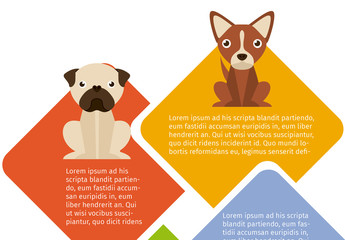 Dog and Pet Care Infographic 4