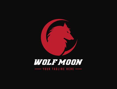Wolf logo, fox logo, animal logo template.