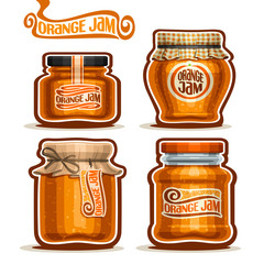 Vector logo Orange Jam in glass Jars with paper lid, rustic Pot home made orange zest jams, twine rope bow, homemade fruit jam jar, farm jelly pot with label, checkered cloth cap, isolated on white.