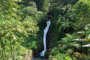 Gitgit twin waterfall, Bali, Indonesia