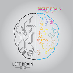 Left brain and right brain, Cerebral function  concept