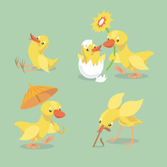 Cute chicken and duckling.