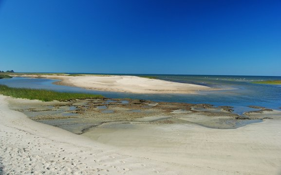 Sandy Atlantic shoreline of Wellfleet Bay in Cape Cod.