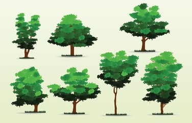 set of spring or summer cartoon trees