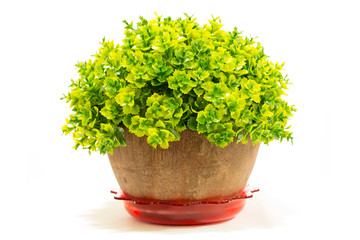 Decorative artificial tree in flowerpot isolated