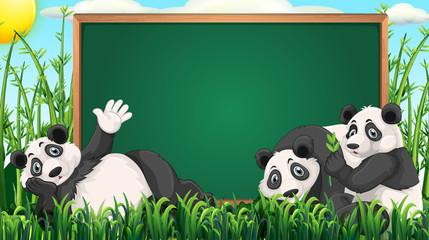 Board design with three pandas on grass