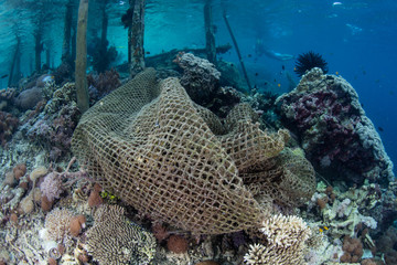 Discarded Fishing Net on Coral Reef