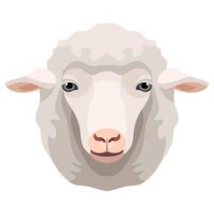 Vector white sheep or ram face farm animal icon
