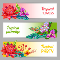Tuinposter Abstract bloemen Banners with Thailand flowers. Tropical multicolor plants, leaves and buds