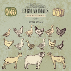 Farm animals vintage hand drawn collection, chicken, geese