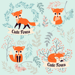 Set of cute cartoon foxes in modern simple flat style. Isolated vector illustration.