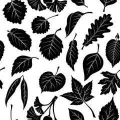 Seamless Nature Background with Black Pictogram Tree Leaves, Oak, Willow, Liquidambar, Hawthorn, Poplar, Aspen, Hazel, Ginkgo Biloba, Elm, Birch, Alder, Linden, Hornbeam, Chokeberry and Lilac. Vector