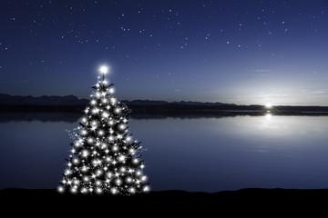 Wall Mural - Weihnachtsbaum am See