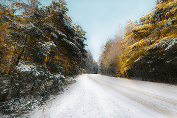 Country road in coniferous forest covered with snow.