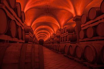 Cantina botti di vino