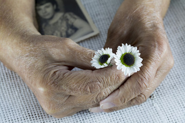Elderly Woman and Flowers