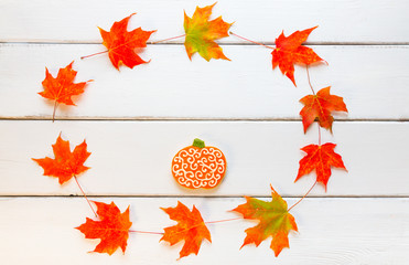 Pumpkin cookie on white wooden background in circle frame of aut