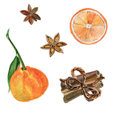 Watercolor painting christmas set: mandarin, cinnamon, star anise