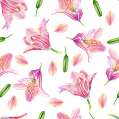 Watercolor pink lily, garden flower isolated on white, seamless pattern, decorative background, botanical hand drawn painting texture for design package cosmetic, greeting cards, wedding invitation