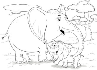 The zoo. Animals of Africa. Elephants. Cute elephant mother and her baby. Illustration for children. Coloring book. Coloring page. Cartoon character.