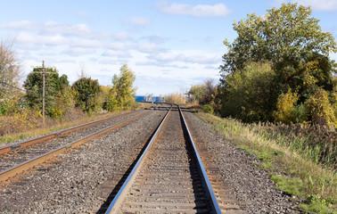 Train tracks edged by trees.