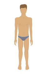 Man body. Male body in underwear. Vector illustration human anatomy - front view. Colored template of man's figure. Isolated on white background
