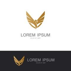 bird wing abstract company logo