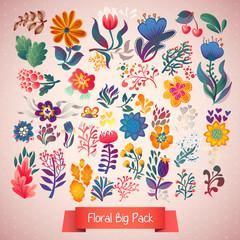 Flowers decorative set of illustration. doodle plants