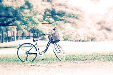 Bicycle in the public park in vacation holiday with retro or aut