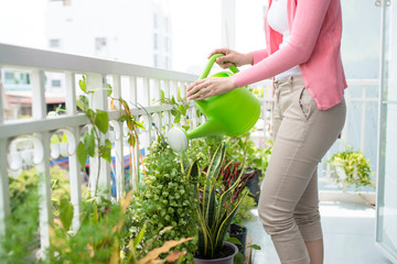 Charming Young Asian Woman Watering Plant In Container On Balcon