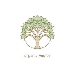 Vector Organic Design