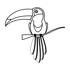 silhouette toucan bird beautiful animal over white background. vector illustration