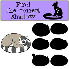 Educational game: Find the correct shadow. Little cute lemur.