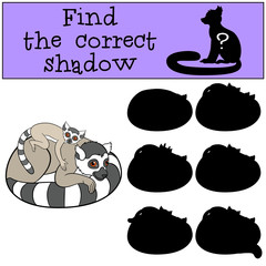 Educational game: Find the correct shadow. Mother lemur with bab