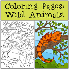 Coloring Pages: Wild Animals. Cute orange iguana.