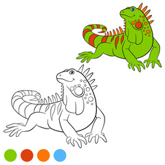 Color me: iguana. Cute green iguana smiles.