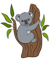 Cartoon animals. Little cute baby koala smiles.
