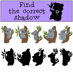 Educational game: Find the correct shadow. Little cute koala.