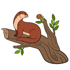 Cartoon animals. Little cute otter on the tree branch.