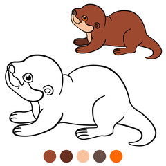 Coloring page. Little cute baby otter smiles.