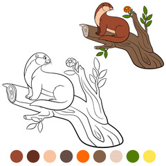 Coloring page. Little cute otter sits on the tree branch.