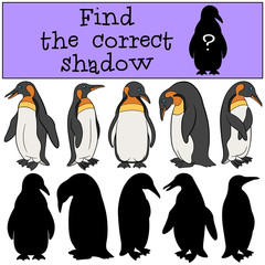 Educational game: Find the correct shadow.