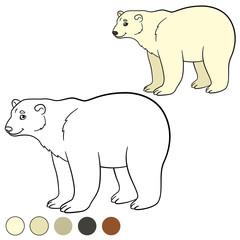 Coloring page. Cute polar bear smiles.