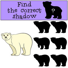 Educational game: Find the correct shadow. Cute polar bear smile