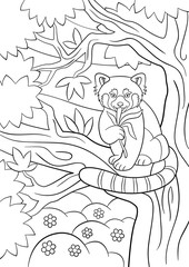 Coloring pages. Little cute red panda eats leaves.