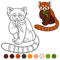 Coloring page: red panda. Little cute red panda eat leaves.