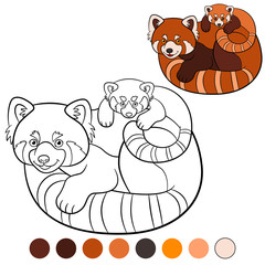 Coloring page: red panda. Mother red panda with her baby.